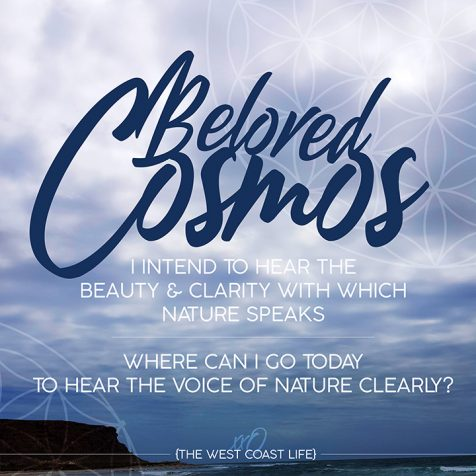 I Intend to Hear the Beauty & Clarity with which Nature Speaks