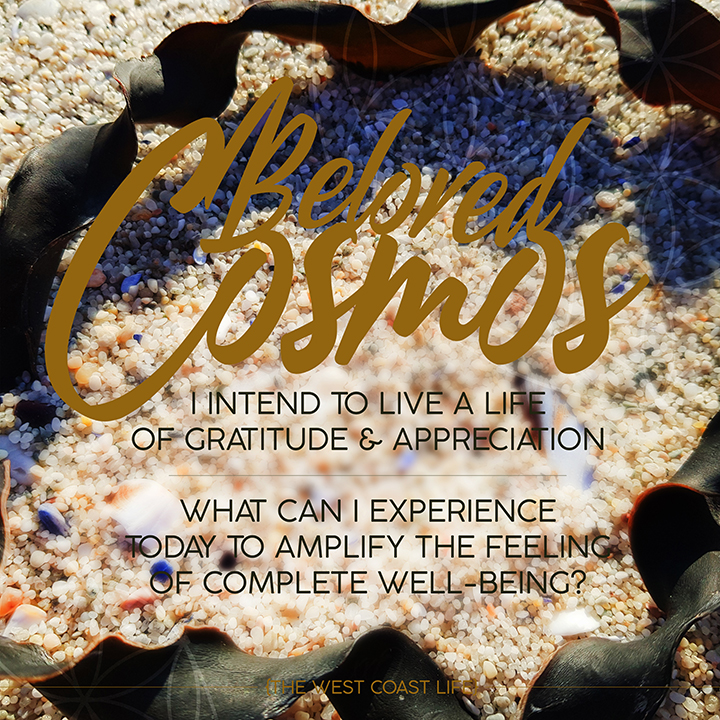 I Intend to Live a Life of Gratitude & Appreciation
