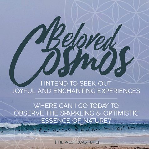 I Intend to Seek out Joyful and Enchanting Experiences